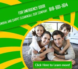 Commercial Rug Cleaning - Carpet Cleaning San Fernando, CA